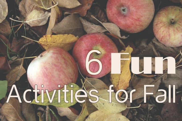 6 Fun Activities for Fall